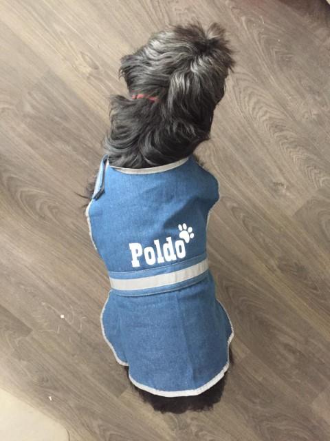 Pet (Piccola)